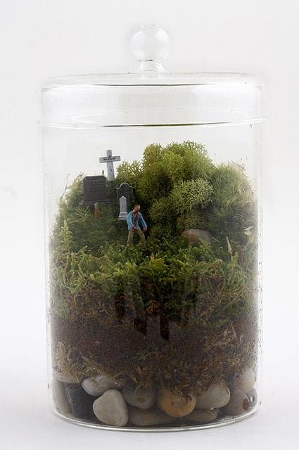 Zombie Twig Terrarium