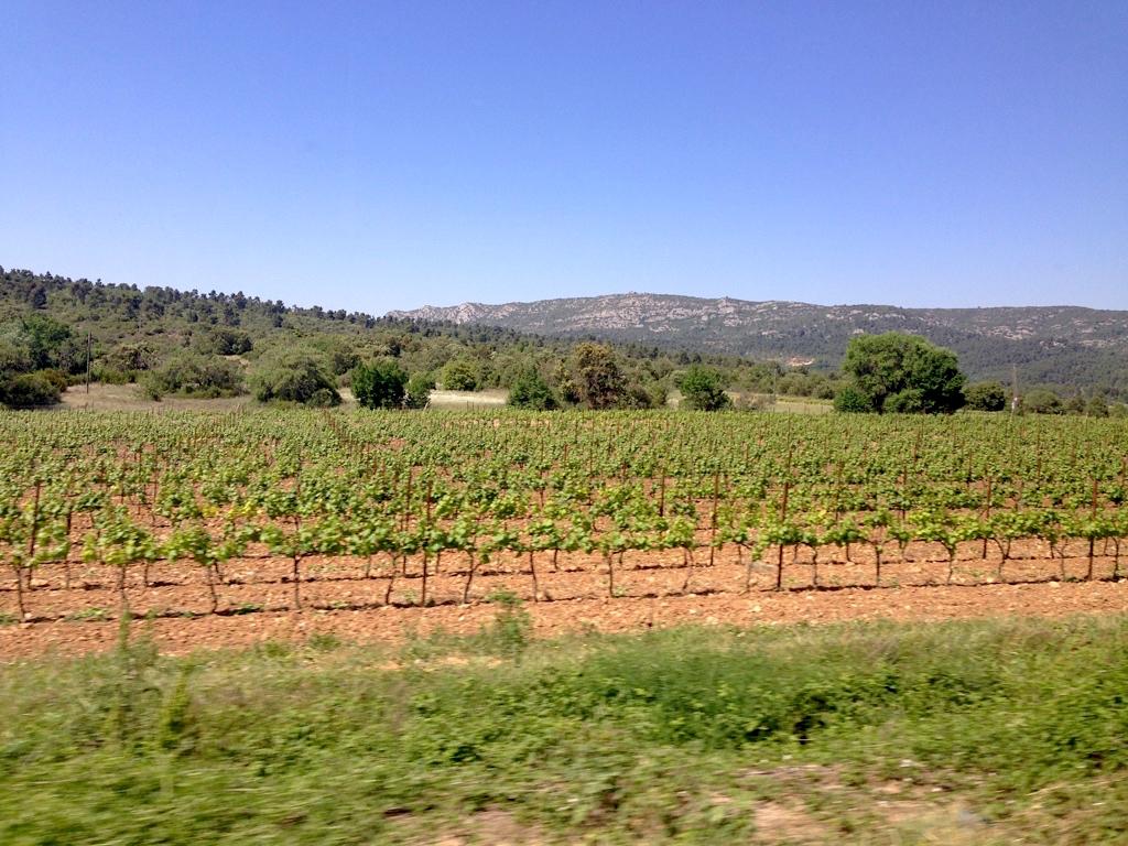 wine tour aix