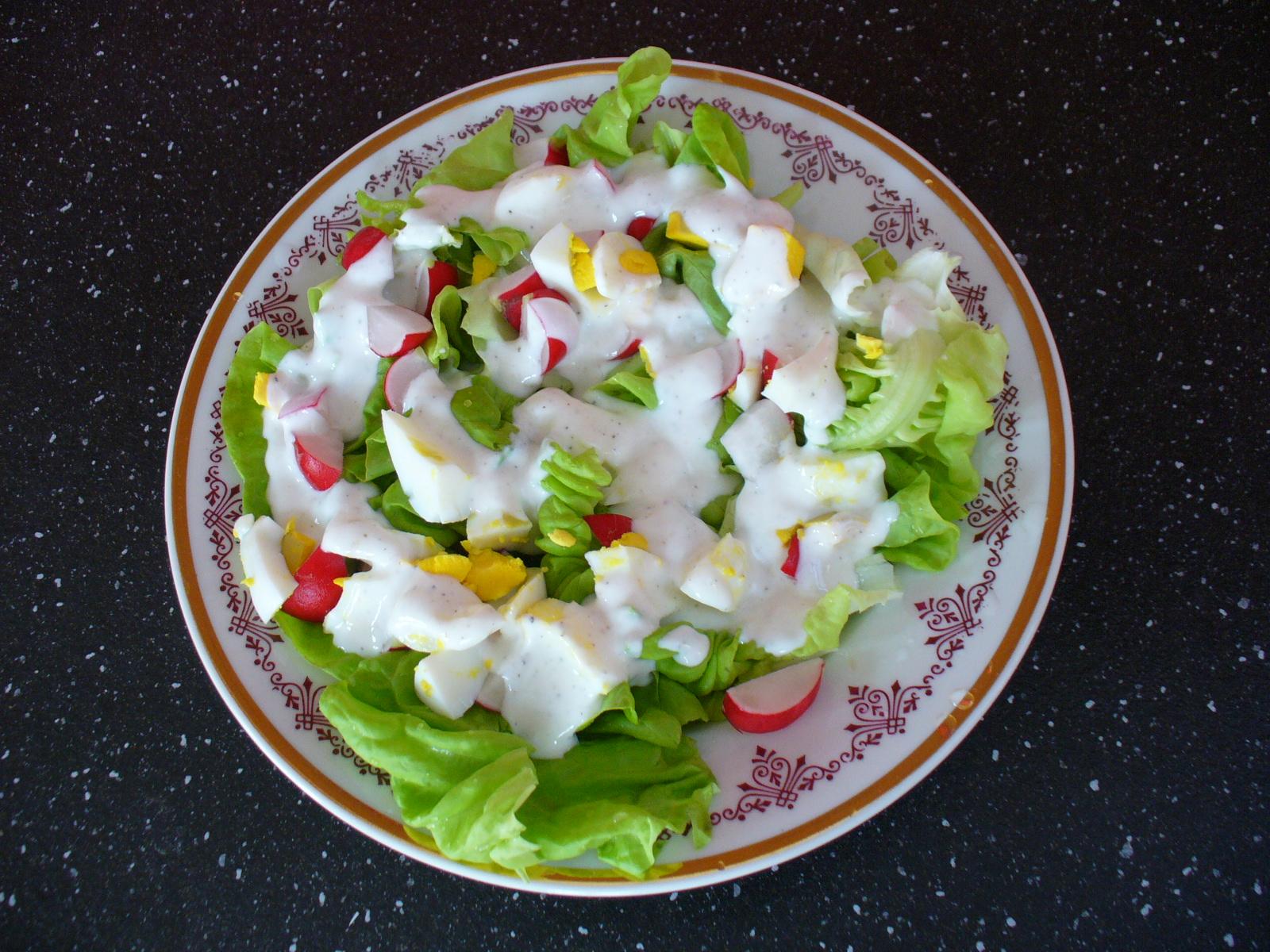 Rychlý salát