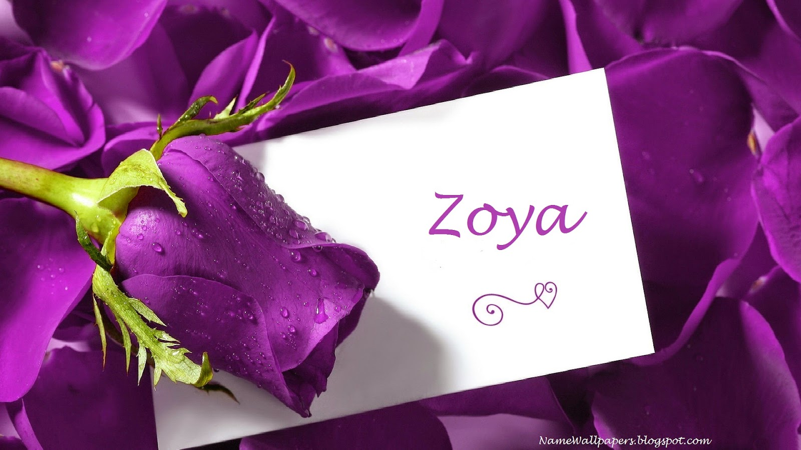 Zoya Name Wallpapers Zoya ~ Name Wallpaper Urdu Name ...