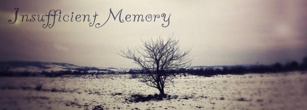 Insufficient Memory