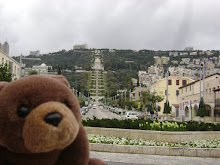 Teddy Bear in Haifa,Israel