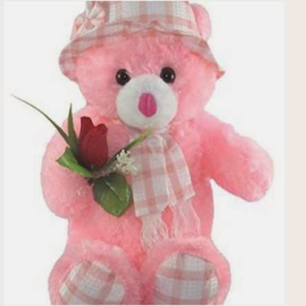 Teddy bear with pink roses - photo#12