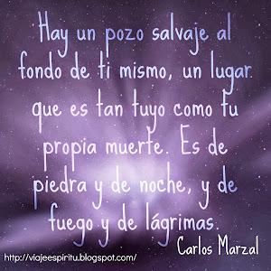 Pozo Salvaje, Carlos Marzal