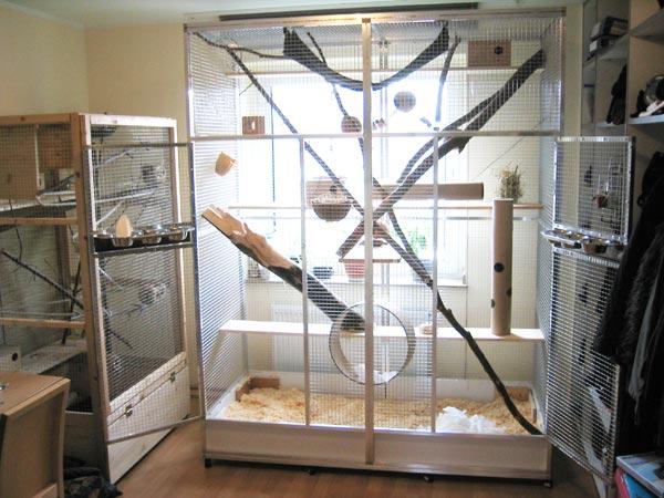 lifestream vom h usle bauen. Black Bedroom Furniture Sets. Home Design Ideas