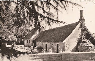 Les Ânes Verts - Cheverny