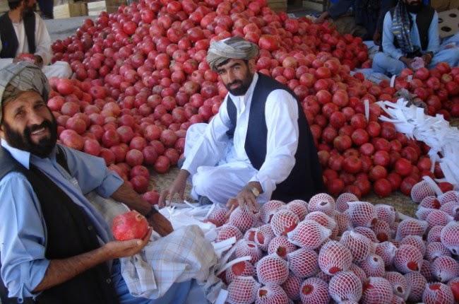 delima pakistan