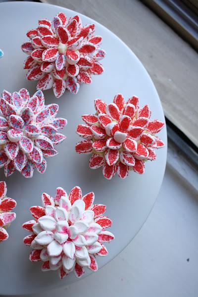 Topping Yo Cupcakes With Chrysanthemums Hummingbird