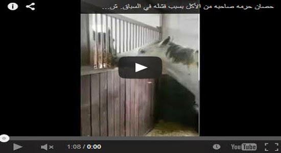 بالفيديو: حصان حرمه صاحبه من الأكل بسبب فشله في السباق شاهد من الذي اطعمه. سبحان الله !!