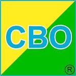 CLASSIFICAÇÃO BRASILEIRA DE OCUPAÇÕES/PROFISSÕES