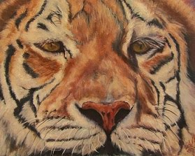 """Wild and Free"", tiger portrait"