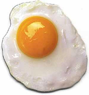 lo que debes Saber acerca del Huevo