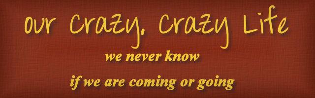 Our Crazy, Crazy Life