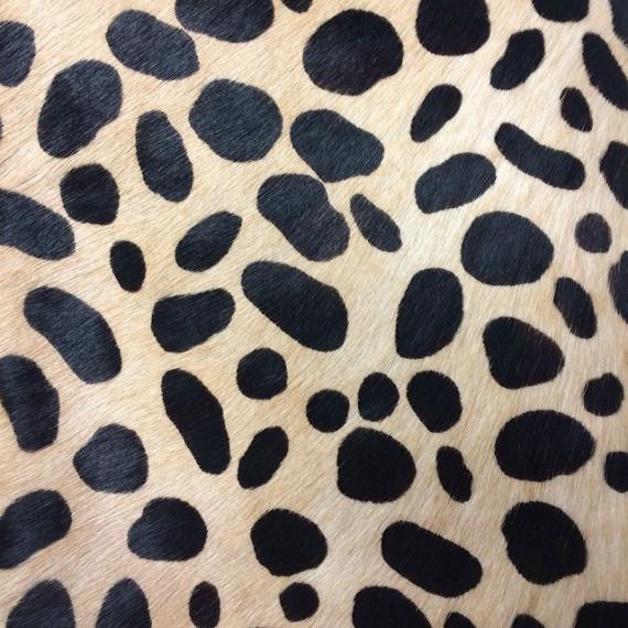 clare vivier leopard print pattern