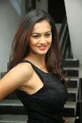 Shubra Aiyappa sizzling photos-thumbnail-5