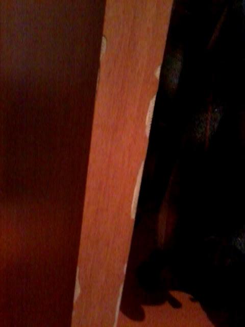 Дверь искуственный шпон