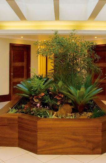 plantas para jardim interno:Meu Palácio de 64m²: Jardim de Inverno