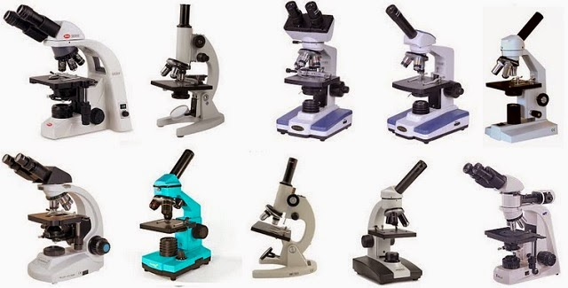 Tips On Shopping For A Microscope