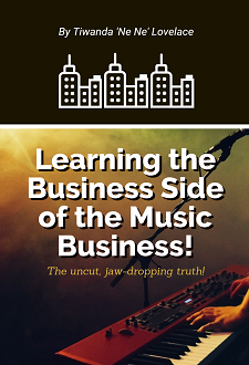 New Learning the Business Side of the Music Business! eBook