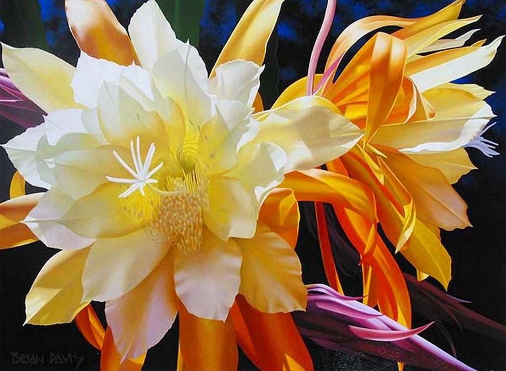 cuadros flores oleo pinturas flores al óleo sobre lienzo flores