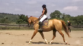 Ms. Jean provides Training for green horses, some problem, and many rehabilitative horses