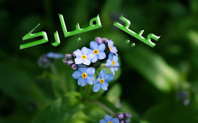 Eid Ul Zuha Adha Mubarak 2012 Card Flower Wallpapers Urdu Text 006