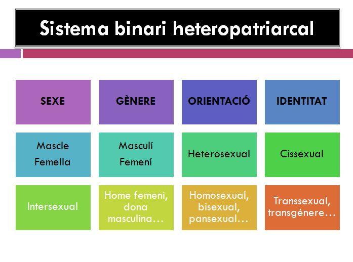 Sistema binari heteropatriarcal