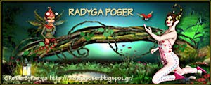 Banner Radyga Poser