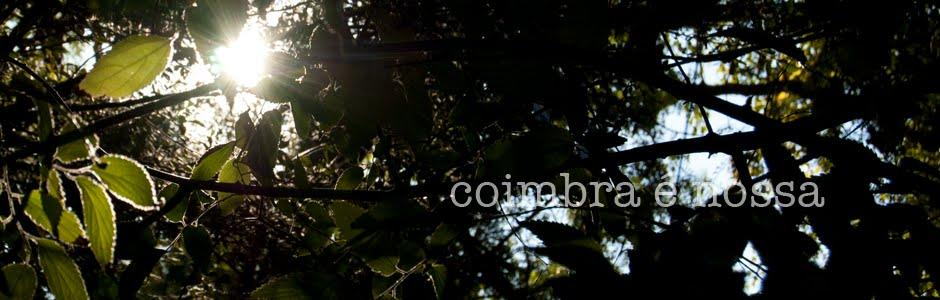 Coimbra é nossa