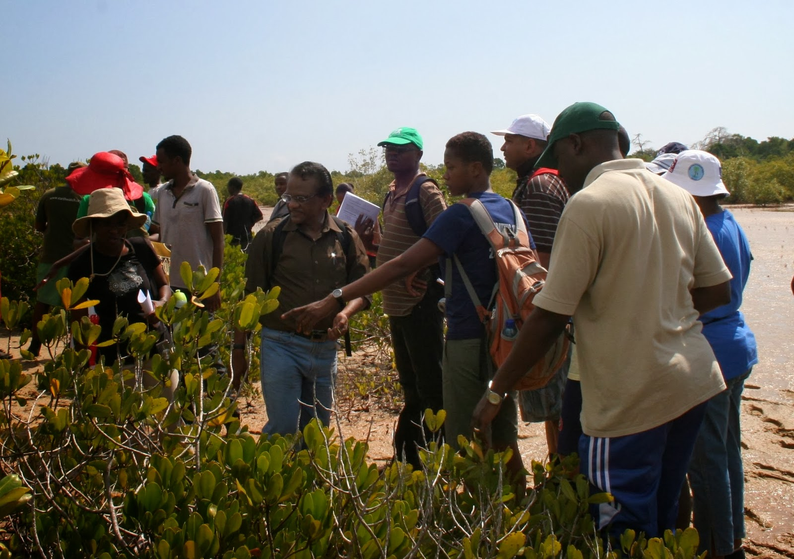 Mangrove+marathon2