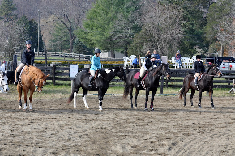 Miran Farm/Natural Connection Schooling Shows are offered yearly!