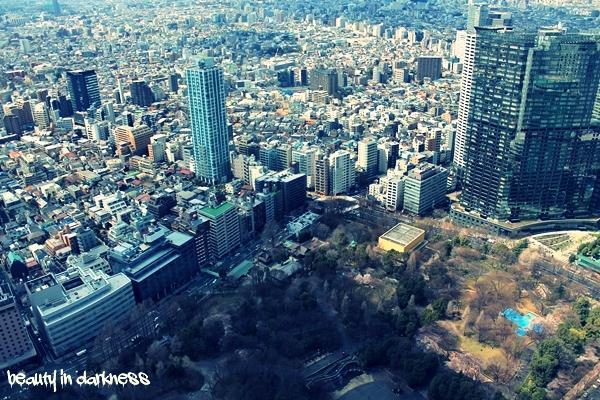 Tokyo souvenir destroyed at its finest 6