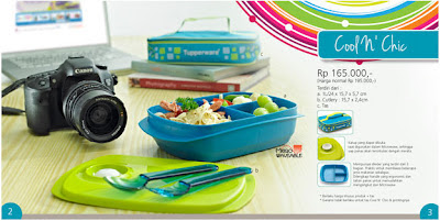 Tupperware Cool N Chic