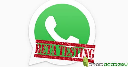 Whatsapp abre programa de Beta Testers: Seja os primeiros a saber das novidades