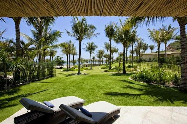 Cung cấp cỏ nhung nhật resort