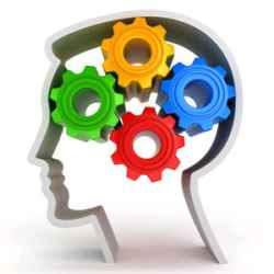 Come calcolare età cervello, calcolo età cerebrale, test online