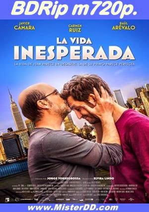 La vida inesperada (2014) [BDRip m720p.]