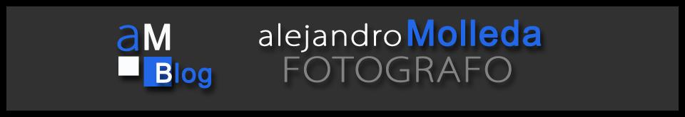 www.alejandromolleda.com