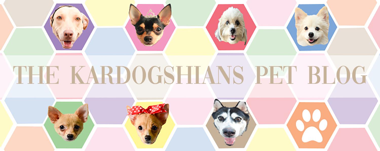 Kardogshians Pet Blog