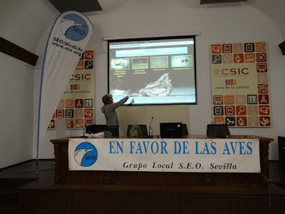 """Conferencia: """"Efectos de las carreteras en las aves"""".<br> Por Pedro Sáez."""