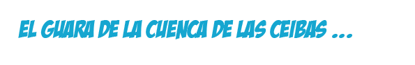 La guacharaca de la cuenca de Las Ceibas