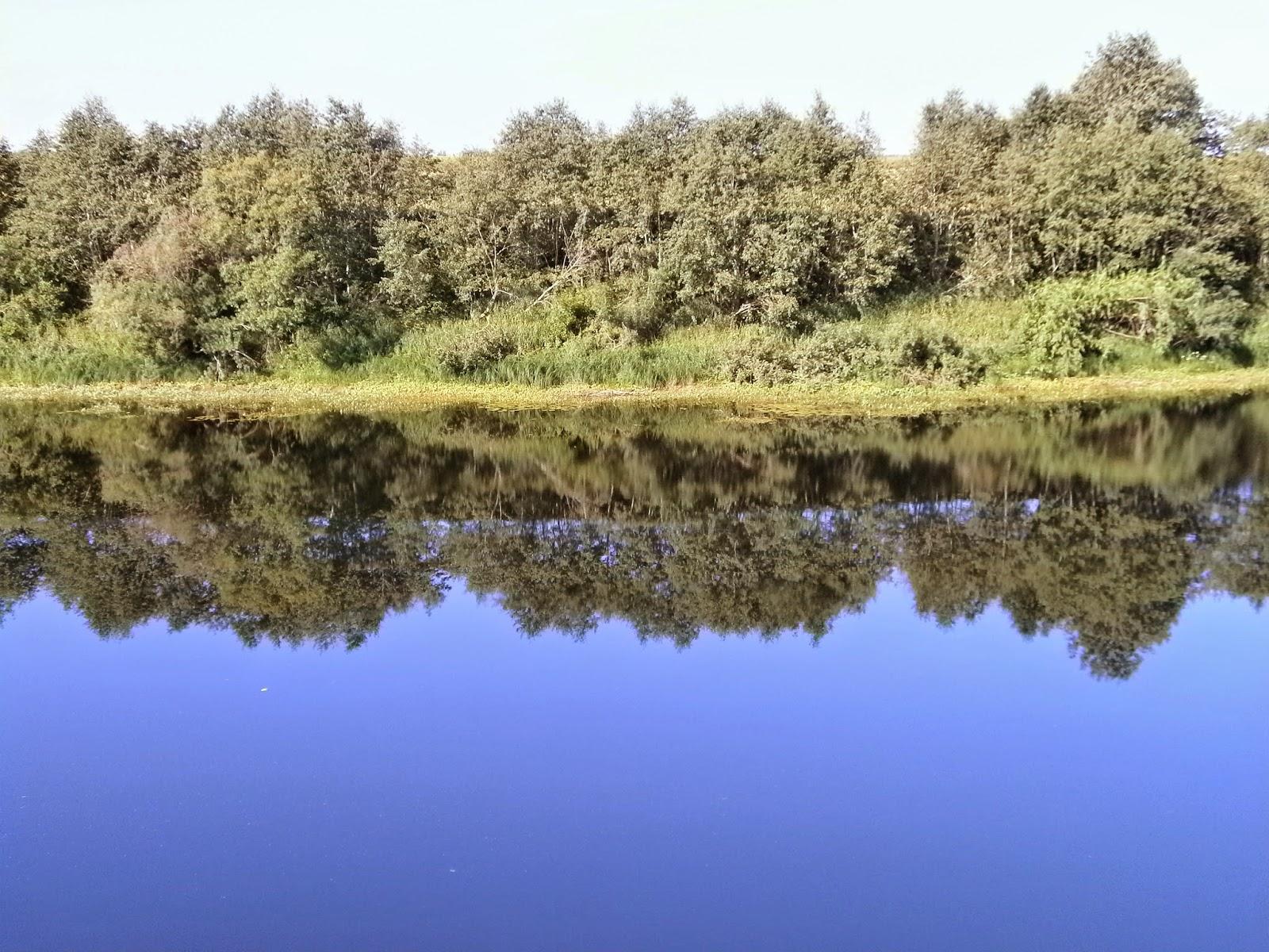 Река Моша - на другой берег реки с помощью SMM от PhDrDAK