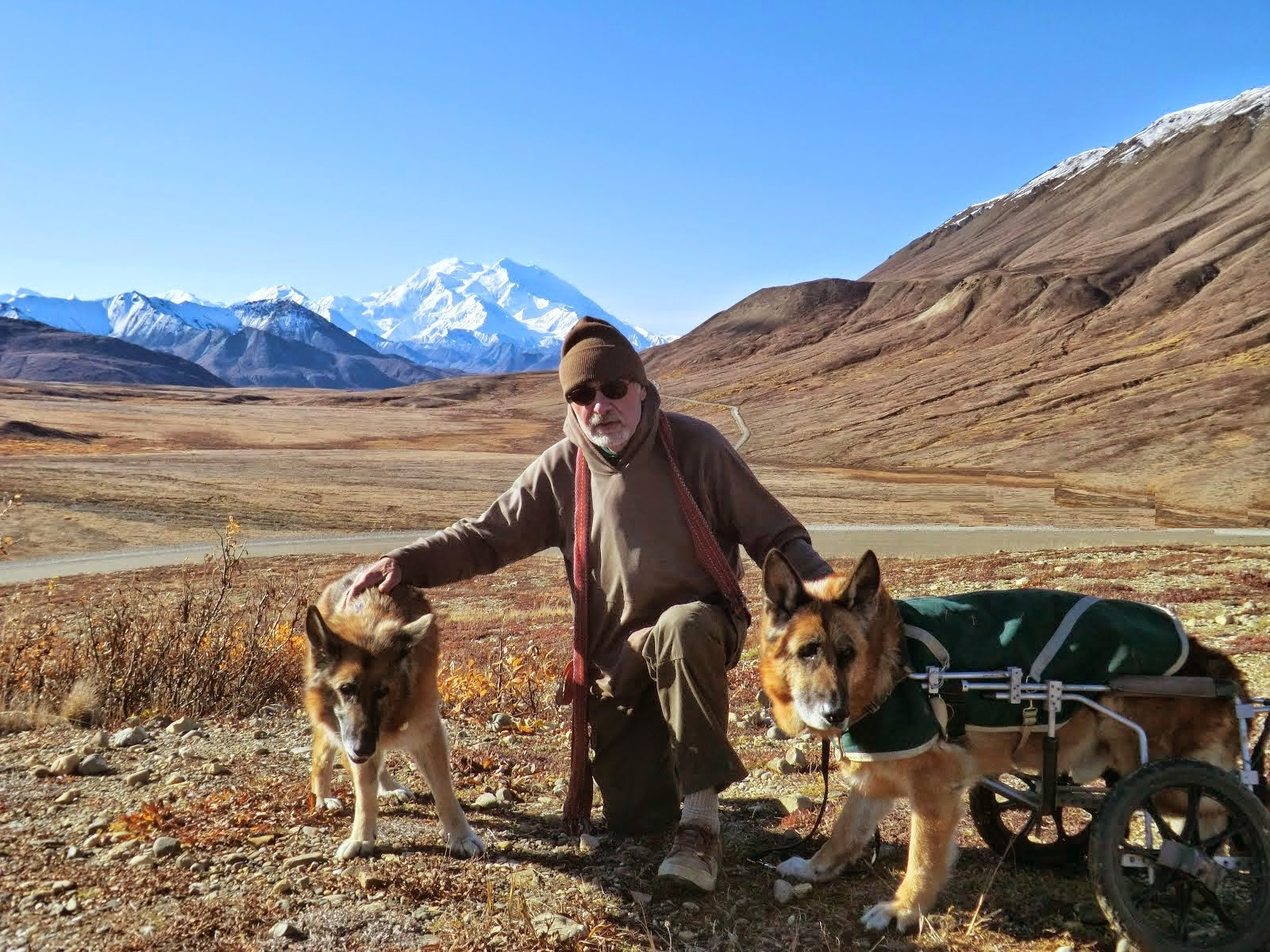 Leben and Erde (and Ed) with Denali in the background, 2013