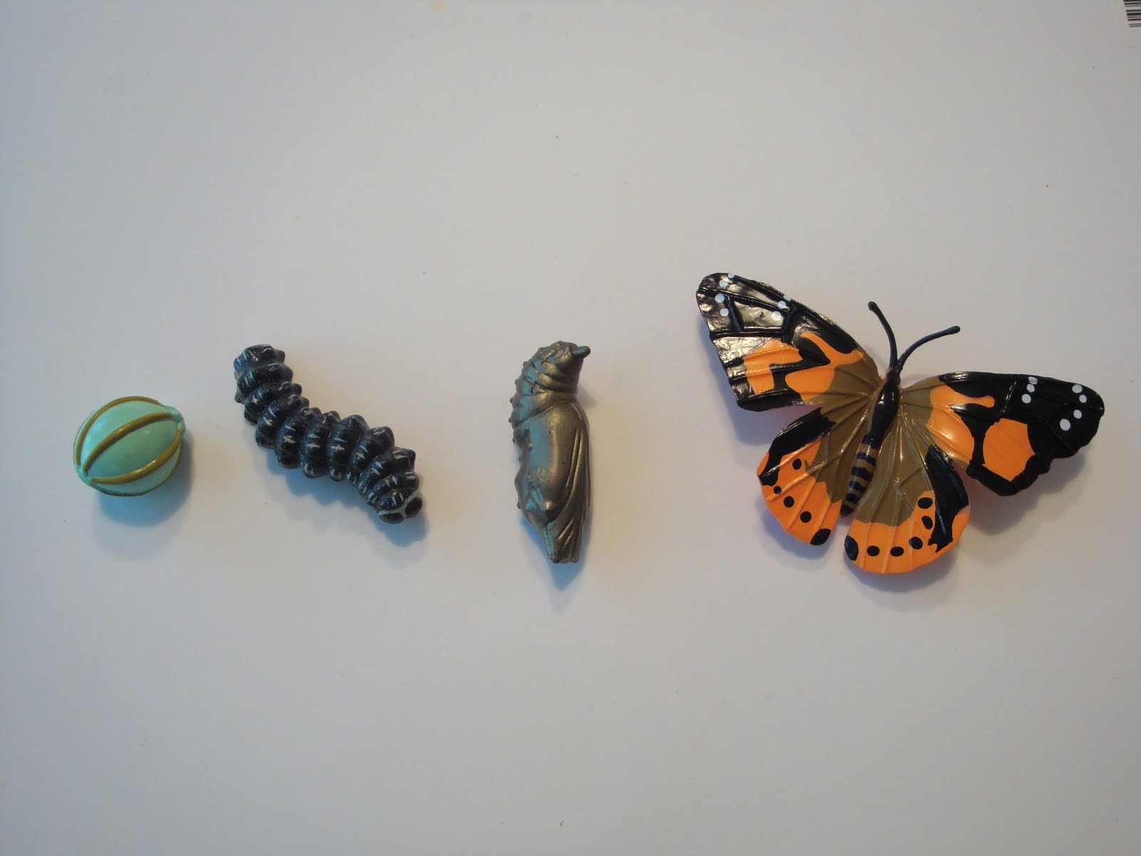Funny painted lady butterfly life - 84.0KB