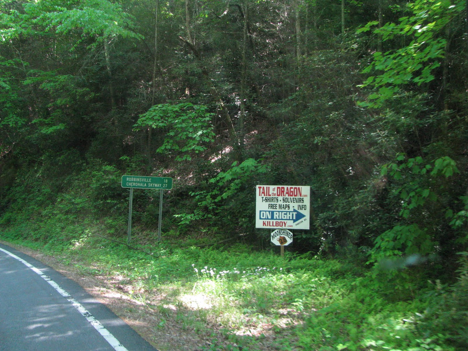 we ran route 28 for a short twisty distance and turned off at 19 74 which took us into route 441 and cherokee nc