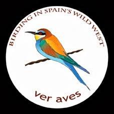 Birding in Spain's Wild West