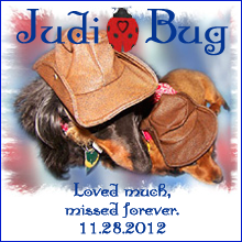 In Memory of Judi ~