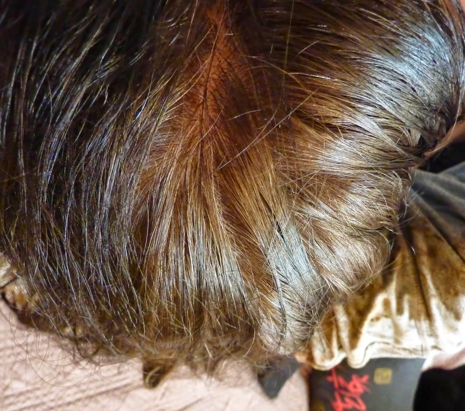 cheveux-avant-coloration-henne-noir-katam
