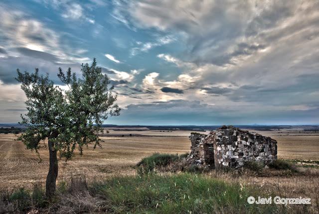 Alfés, HDR, Lleida,