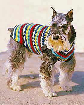 Miss julia s patterns free patterns 20 dog sweater coats to knit